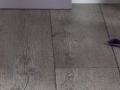 gerflor-vinyl-flooring-limerick-5